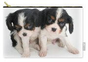 Spaniel Puppies Carry-all Pouch