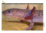 Spring Salamander Carry-all Pouch