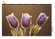 Spring Time Crocus Flower Carry-all Pouch