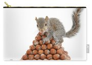 Squirrel And Nut Pyramid Carry-all Pouch