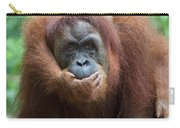 Sumatran Orangutan Pongo Abelii Mother Carry-all Pouch