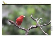 Summer Tanager Carry-all Pouch