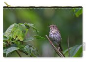 Swainsons Thrush Carry-all Pouch