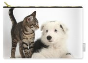 Tabby Kitten & Border Collie Carry-all Pouch