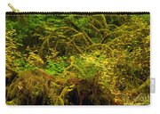 Temperate Rain Forest Carry-all Pouch by Adam Jewell