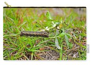 Tersa Sphinx Caterpillar Carry-all Pouch