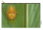 Tessaratomid Nymph Papua New Guinea Carry-all Pouch by Piotr Naskrecki