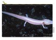 Texas Blind Salamander Eurycea Rathbuni Carry-all Pouch