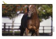 Thoroughbred Horse, Ireland Carry-all Pouch