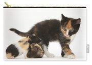 Tortoiseshell Kitten With Baby Carry-all Pouch