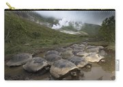 Volcan Alcedo Giant Tortoise Geochelone Carry-all Pouch