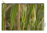 Walking Stick Insect Carry-all Pouch by Ted Kinsman