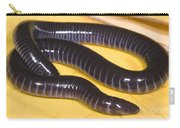 West African Caecilian Carry-all Pouch
