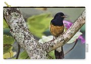 White-rumped Shama Carry-all Pouch
