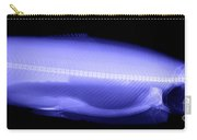 X-ray Of A Trout Carry-all Pouch