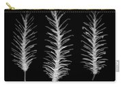 X-ray Of Pine Cones Carry-all Pouch