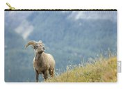 Young Bighorn Sheep, Windy Point Carry-all Pouch