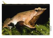 Darwins Frog Carry-all Pouch