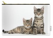 Tabby Kittens Carry-all Pouch