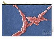Legionella Pneumophila Carry-all Pouch