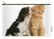 Puppy And Kitten Carry-all Pouch by Jane Burton