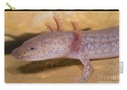 West Virginia Spring Salamander Carry-all Pouch