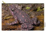 Harlequin Frog Carry-all Pouch