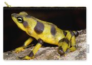 Harlequin Toad Carry-all Pouch