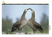 Black-footed Albatross Phoebastria Carry-all Pouch