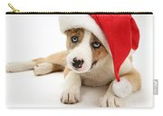Border Collie Puppy Carry-all Pouch by Jane Burton