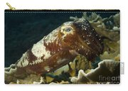 Broadclub Cuttlefish, Papua New Guinea Carry-all Pouch