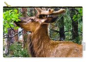 Browsing Elk In The Grand Canyon Carry-all Pouch