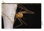 Chinese Cave Cricket Carry-all Pouch