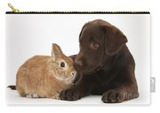 Chocolate Labrador Pup Carry-all Pouch