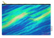 Cholesteric Liquid Crystals Carry-all Pouch