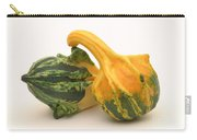 Decorative Squash Carry-all Pouch