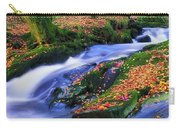 Glenmacnass Waterfall, Co Wicklow Carry-all Pouch