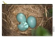 Hatching Robin Nestlings Carry-all Pouch