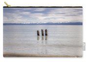 Lake Constance Carry-all Pouch