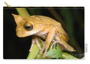 Marsupial Frog Carry-all Pouch