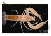 Miami Cave Crayfish Carry-all Pouch
