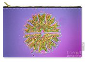 Micrasterias Carry-all Pouch by Michael Abbey and Photo Researchers