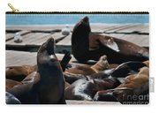Pier 39 San Francisco Carry-all Pouch