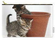 Playful Kittens Carry-all Pouch