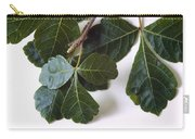 Poison Oak Branch Carry-all Pouch