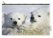 Polar Bear Ursus Maritimus Three Carry-all Pouch