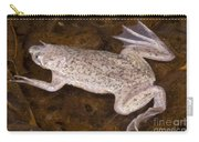 Sabana Surinam Toad Carry-all Pouch