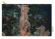 Soft Coral Seascape, Indonesia Carry-all Pouch
