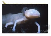 Texas Blind Salamander Eurycea Rathbuni Carry-all Pouch