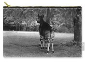 Two Stripes In Black And White Carry-all Pouch
